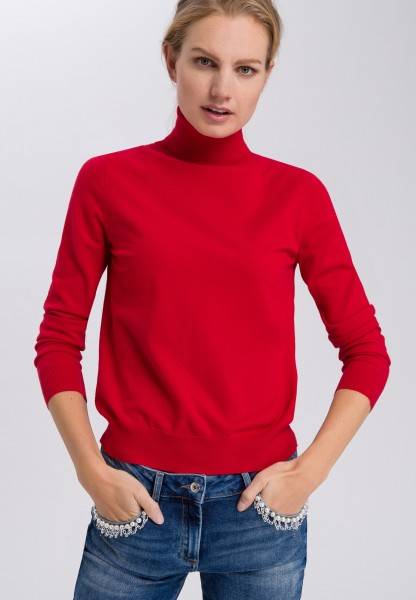 Jumper in basic look with turtleneck